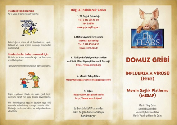 domuzgribi1